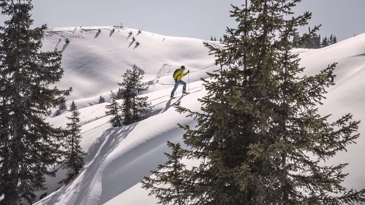 Waldski Skidåkning Saalfelden Leogang vintersemester