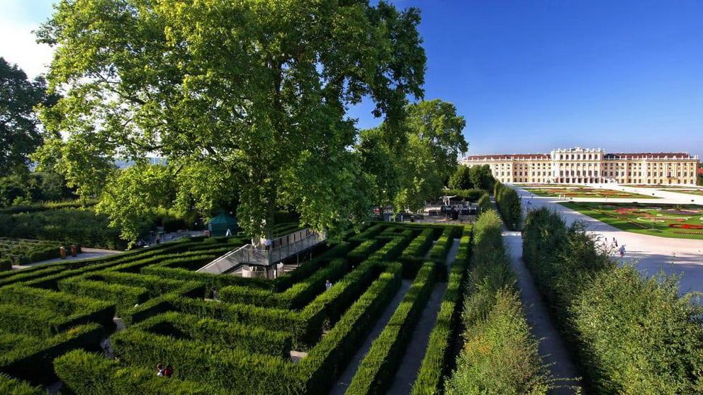Labyrint vid Schloss Schönbrunn Wien Österrike