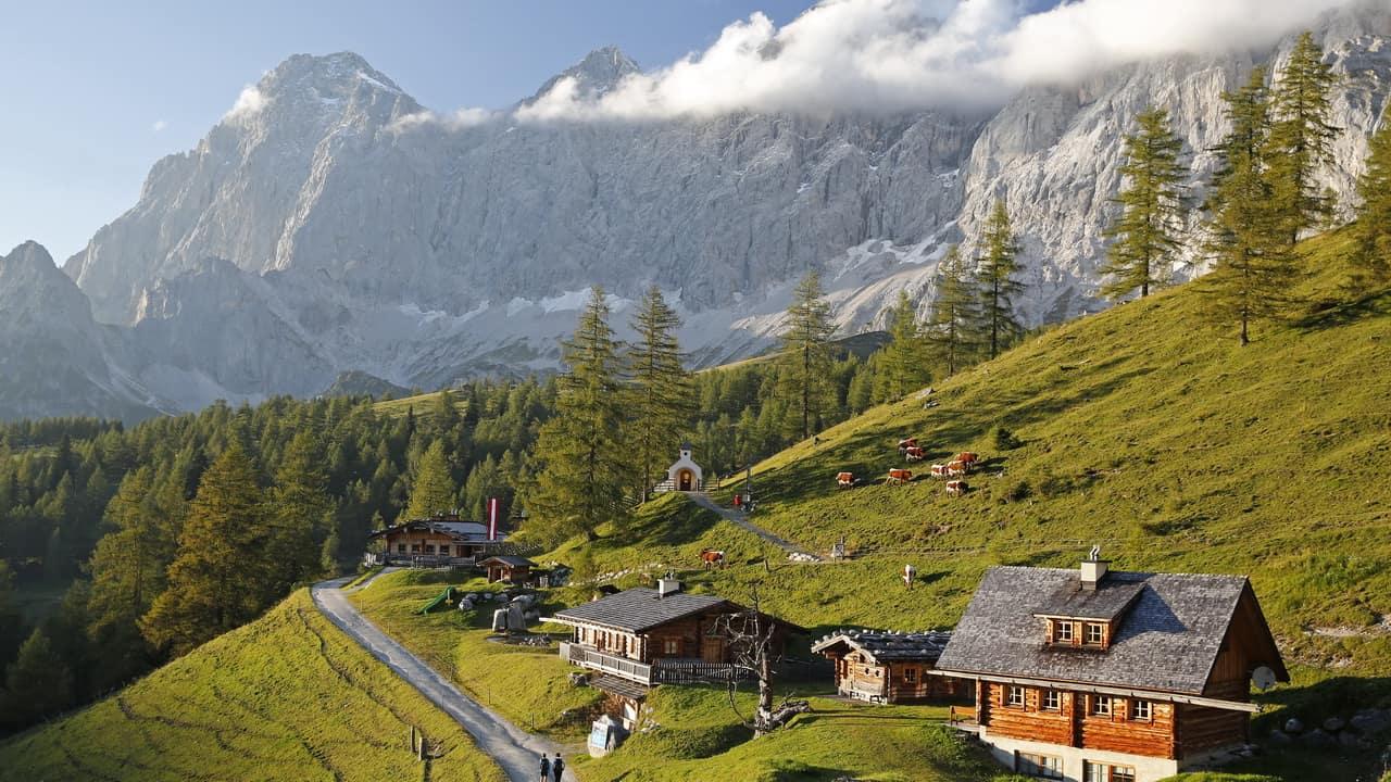 Almvandring vid Ramsau Schladming Dachstein Semester i Österrike