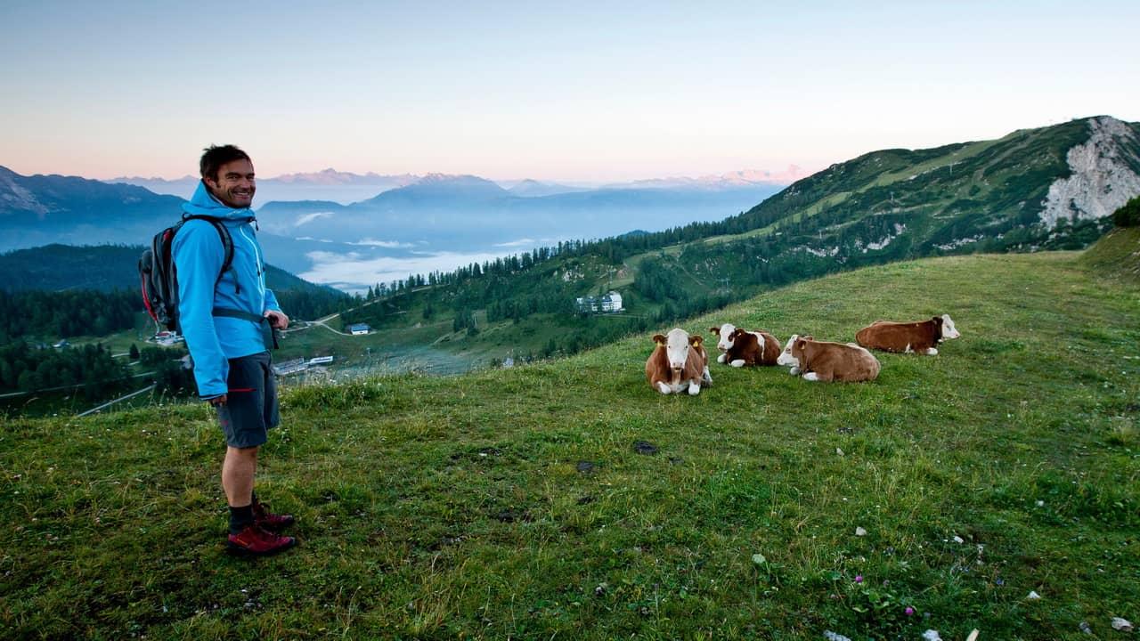 Vandra vid Dachstein vandring semester i Österrike