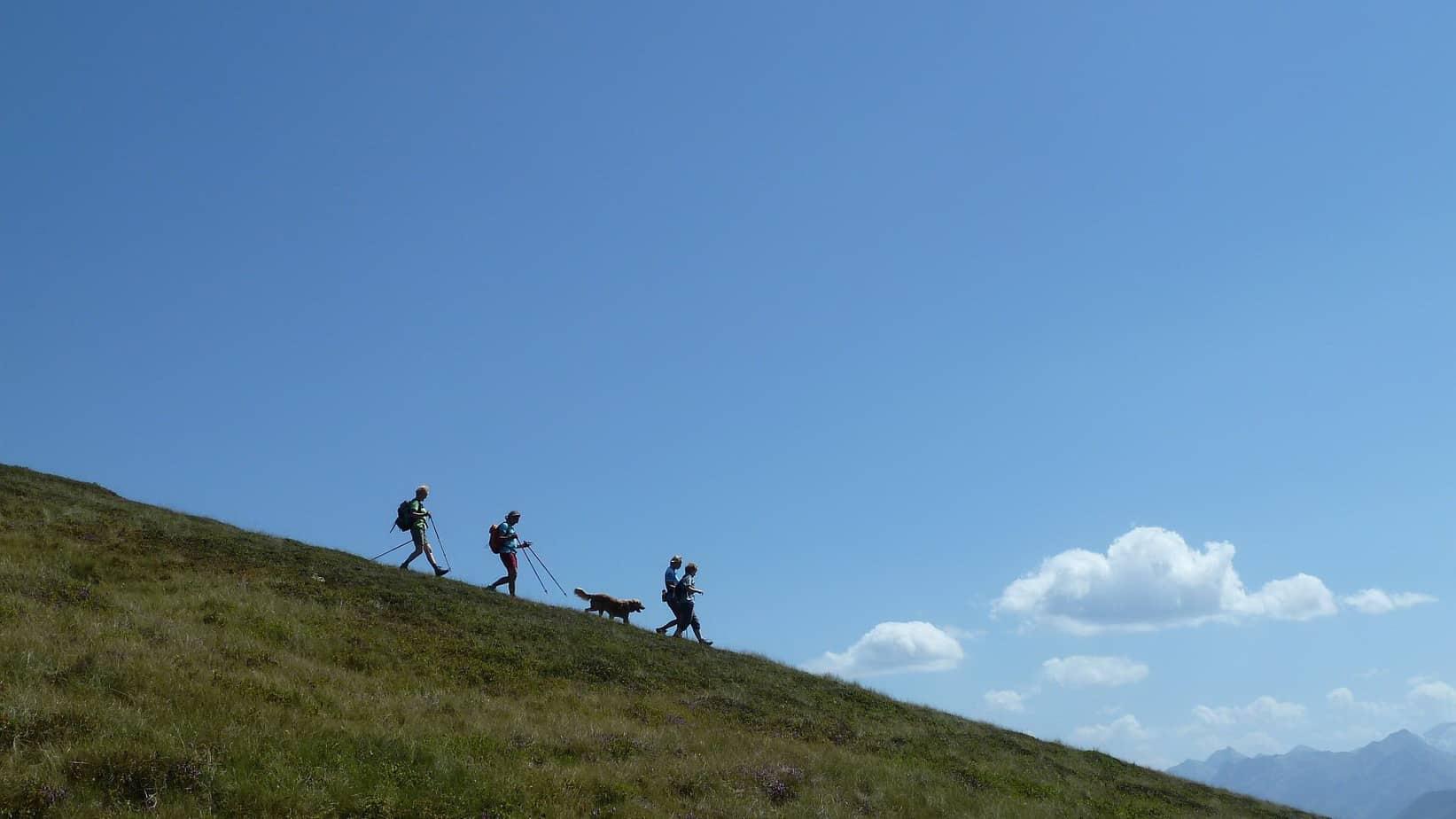 Vandring på gräsbergen i Pinzgau Semester