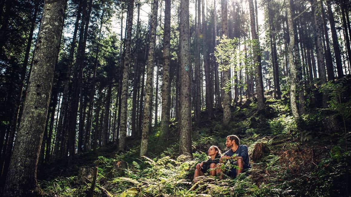 Tanka kraft i Saalfeldens skogar Semester i Österrike