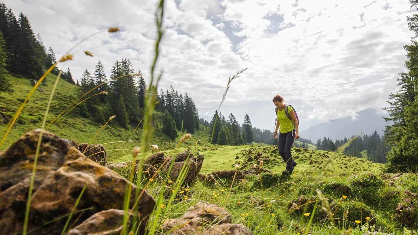 Spielbergalm Saalfelden vandrare Zell am See