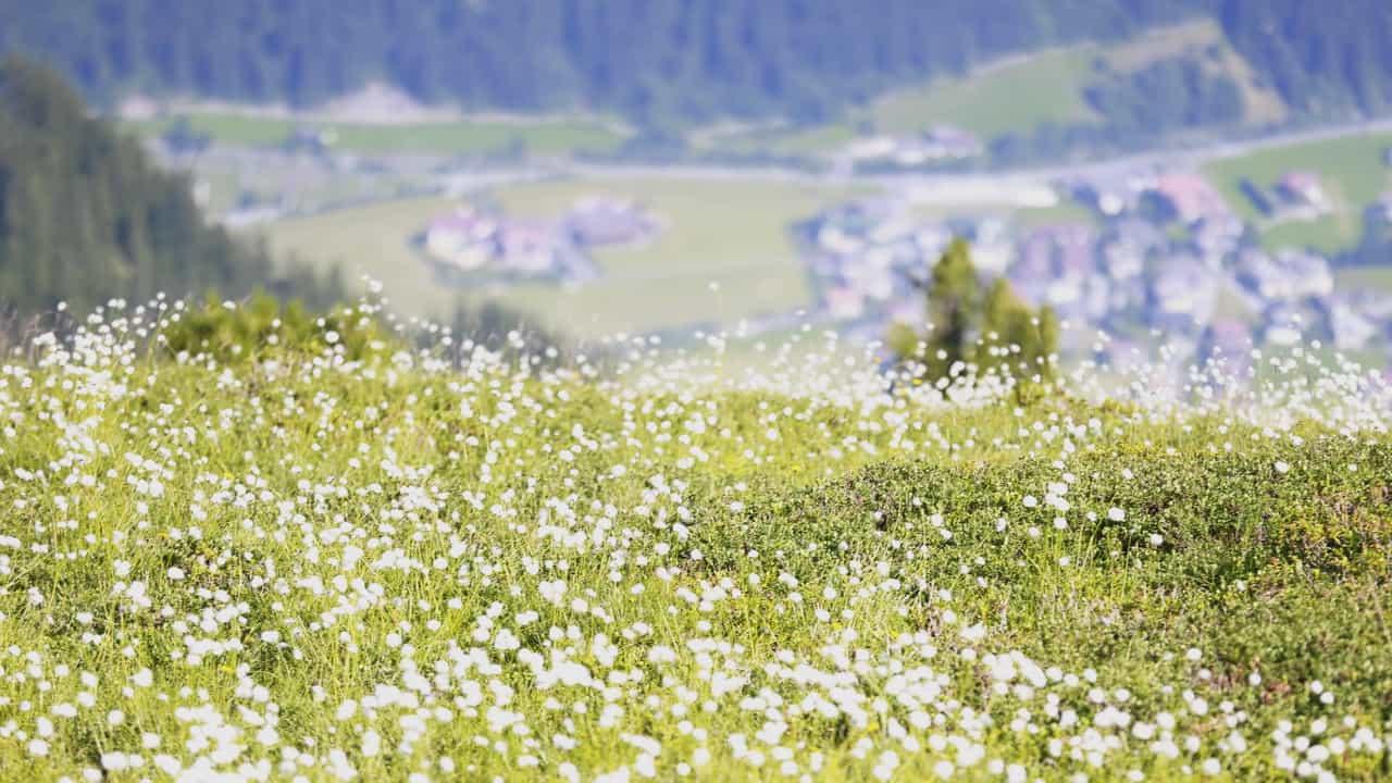 Vy på Mayerhofen Zillertal Semester i Österrike