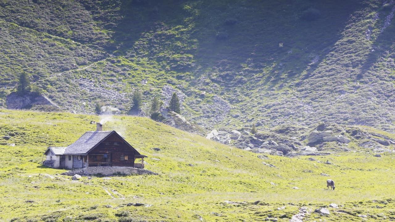 Alpstuga i Zillertal Semester i Österrike