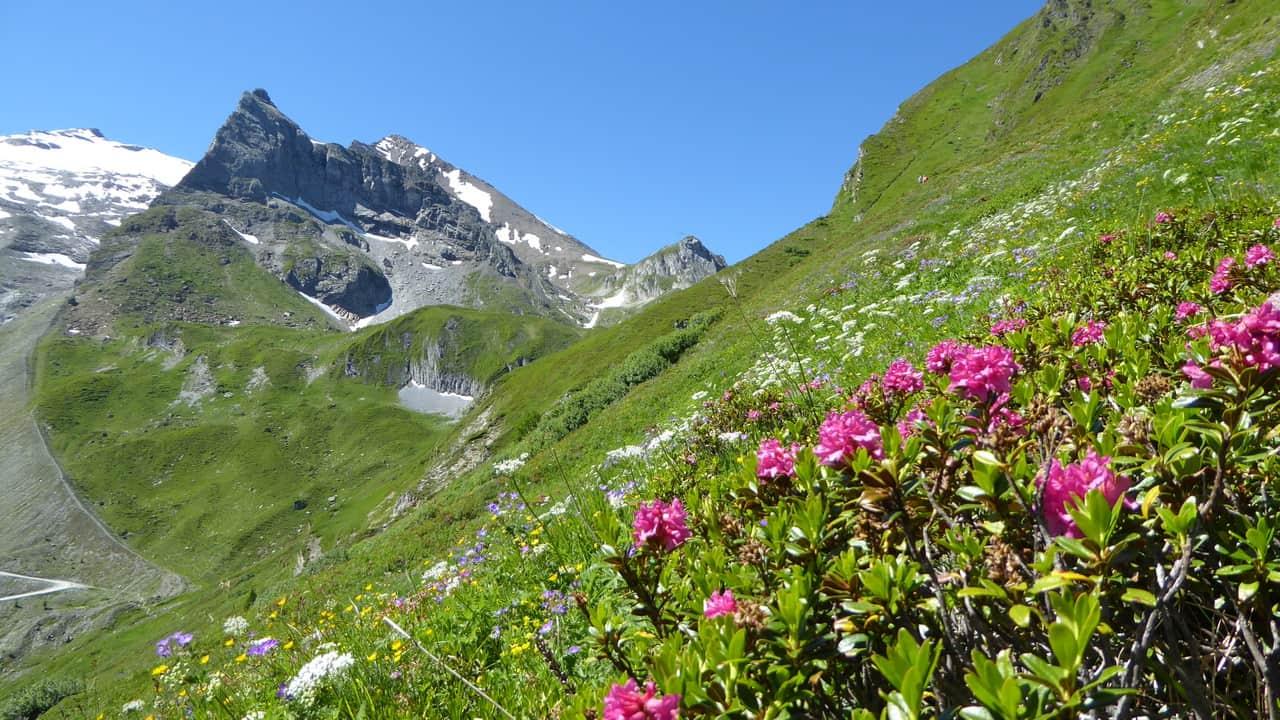 Zillertal © Austria Travel - Rusner Semester i Österrike