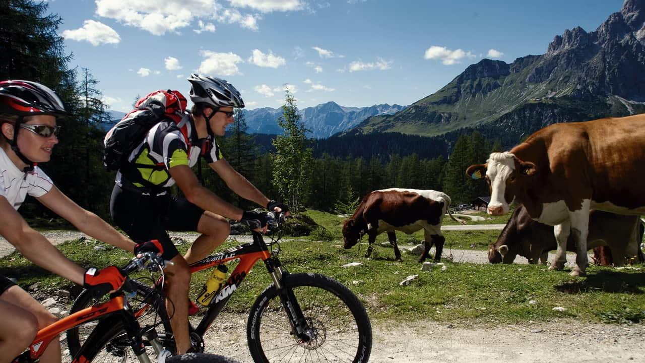 Mountainbike vid Dachstein Österreich Österrike