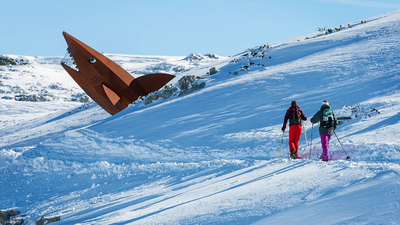 Vintersemester i Salzkammergut - Dachstein haj - snöskovandring Krippenstein - Dachstein Österrike