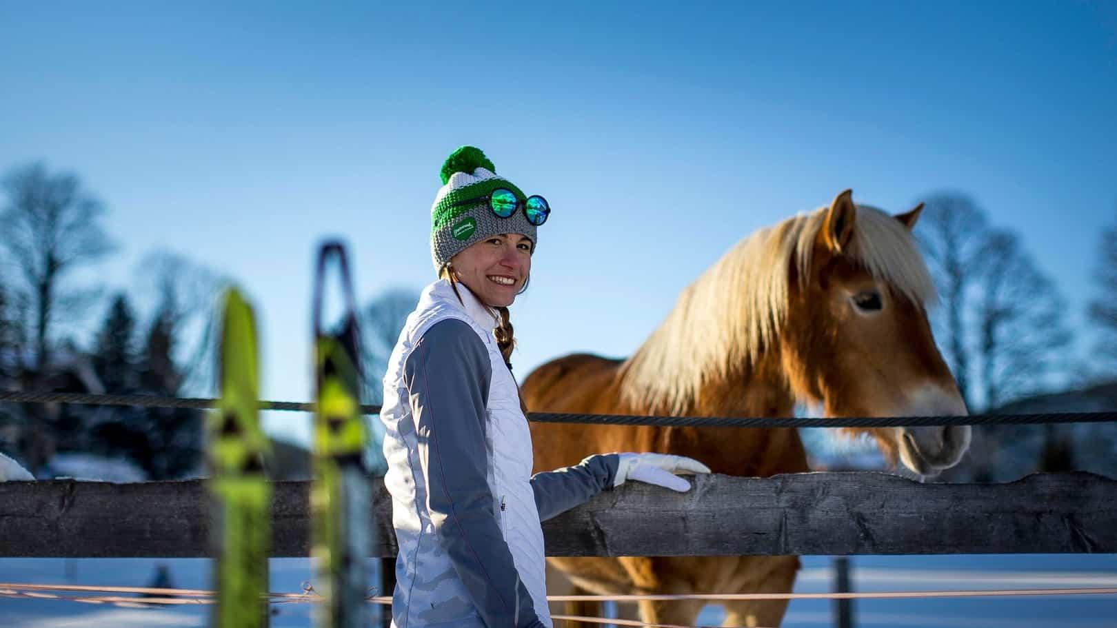 Haflinger häst Ausseerland Dachstein vintersemester semester i Österrike
