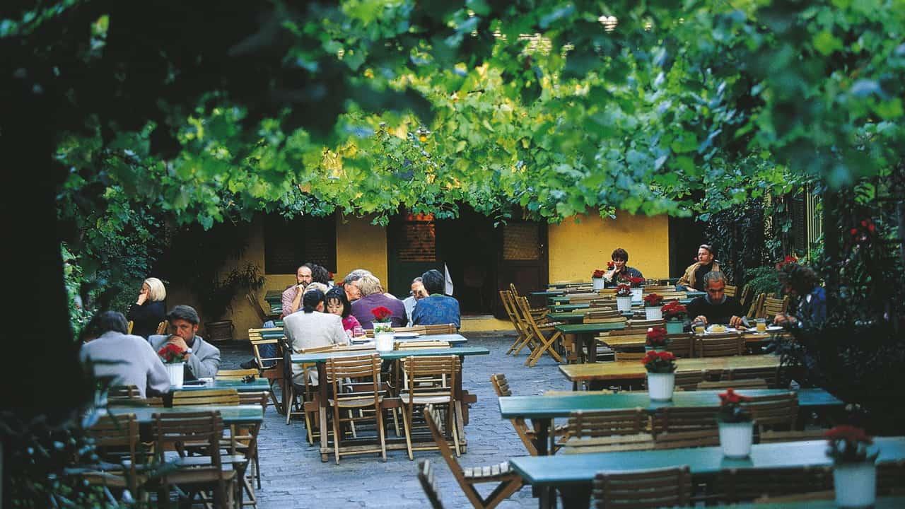 Ta en glas på en Heurigen! Wien Semester i Österrike