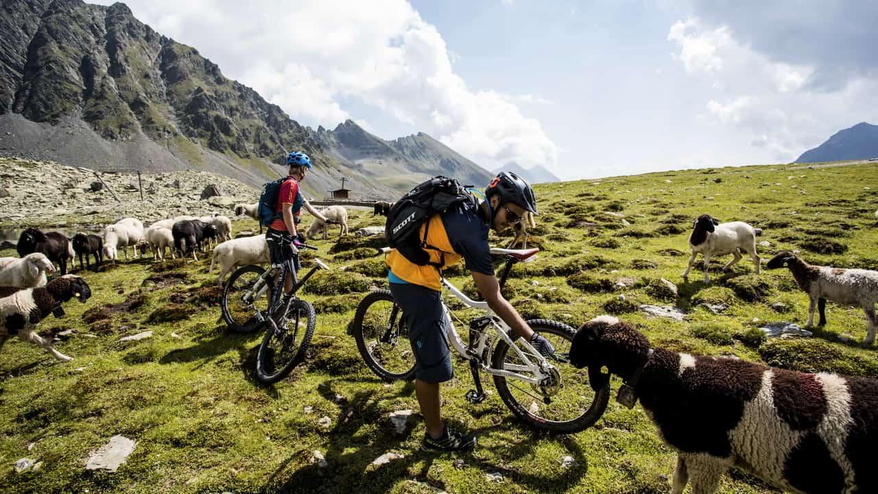 Mountainbike i Kühtai-Sellraintal