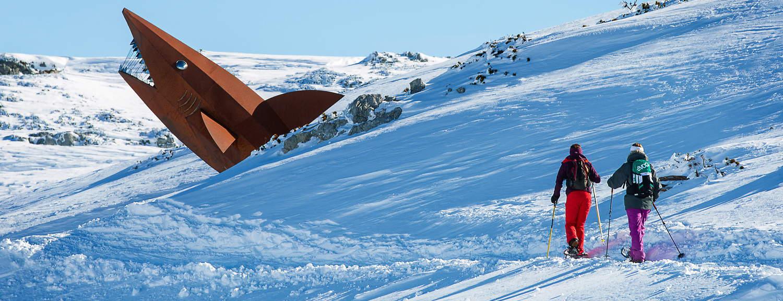 Snösko vandring Snöskovandring Krippenstein Dachstein Hai haj skidsemester Österrike