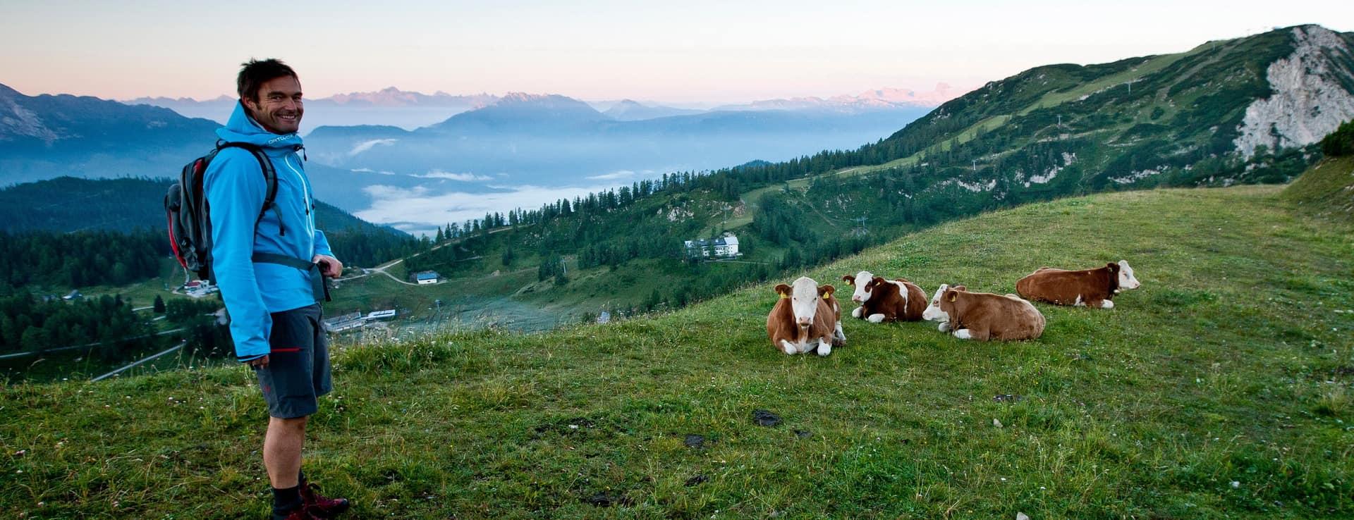 Vandrare Dachstein Österrike Semester Alperna