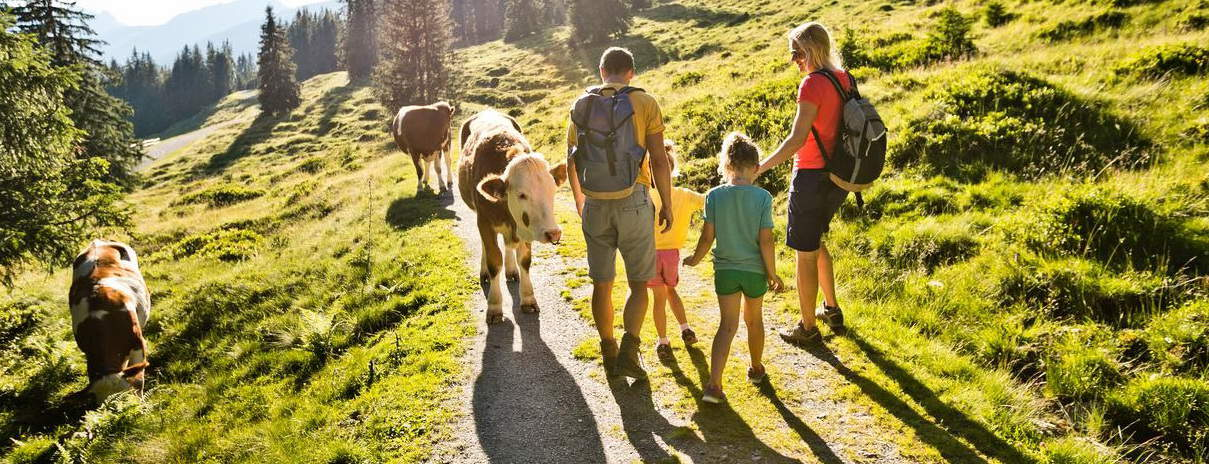 Saalbach på sommaren vandring semester i Österrike med Austria Travel