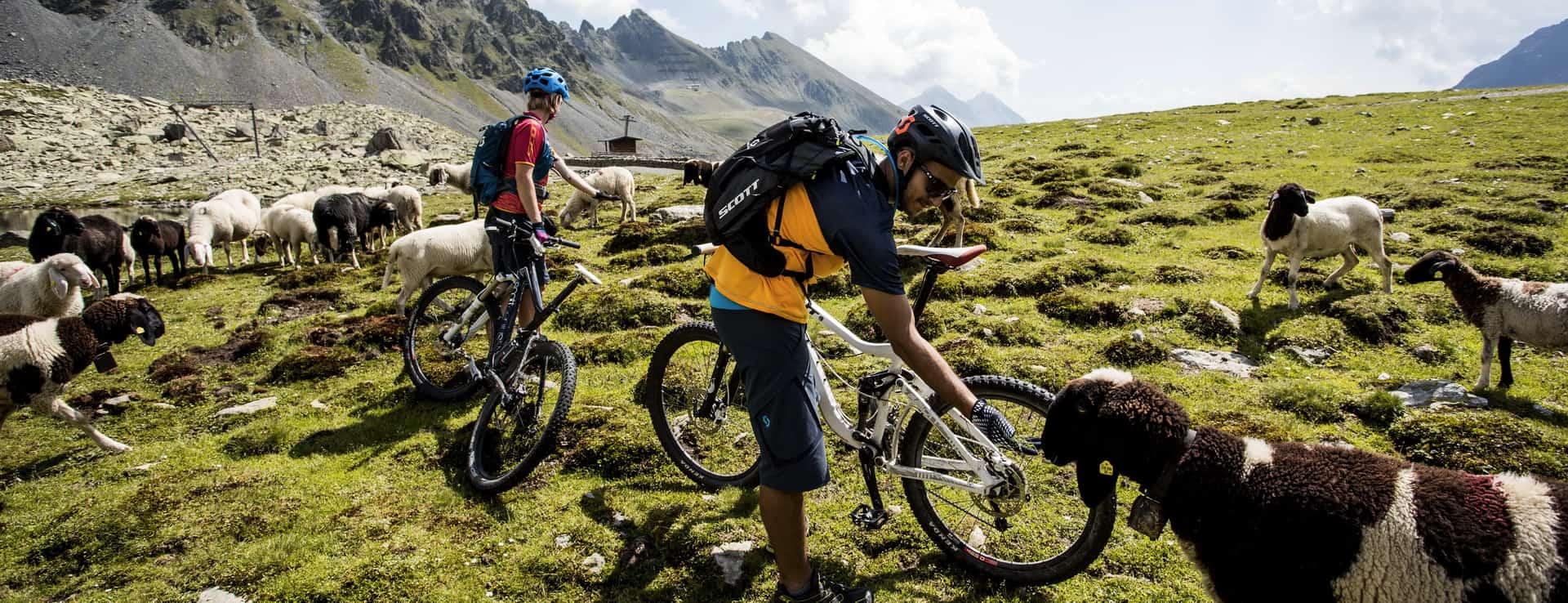 Innsbruck Mountainbiking Kühtai-Sellraintal Semester i Österrike Tirol