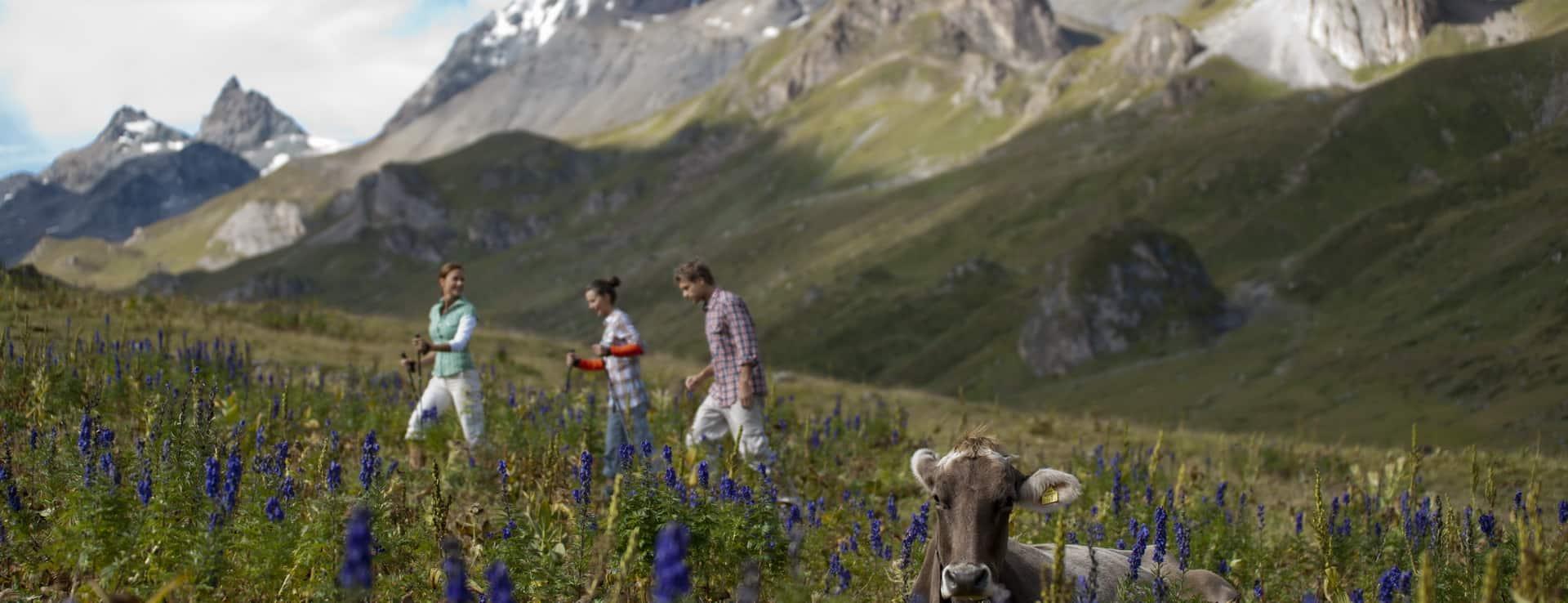 Vandra i Ischgl Semester i Österrike