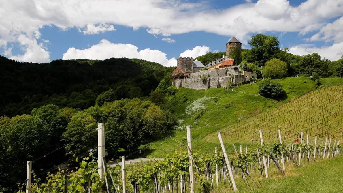 Blick auf Burg Deutschlandsberg Cykla Cykling Semester i Österrike Toscana