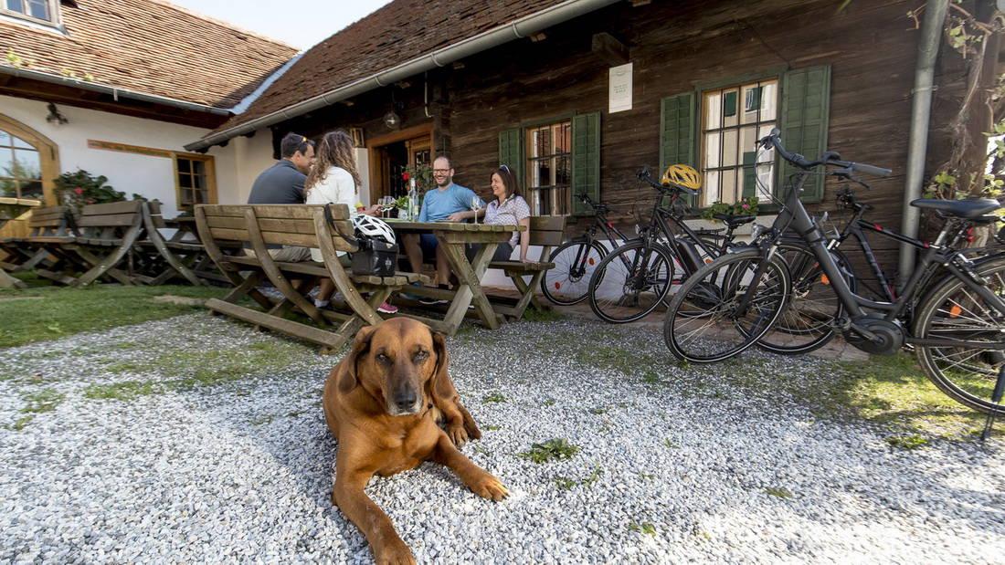 Buschenschank i Puch bei Weiz Steiermark Semester i Österrike