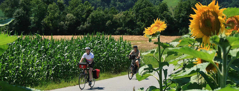 Cykla på egen hand Steiermark Austria Travel