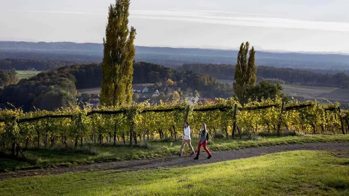 Vandra i vackra Klöch - Südoststeiermark Steiermark - Semester i Österrike med Austria Travel