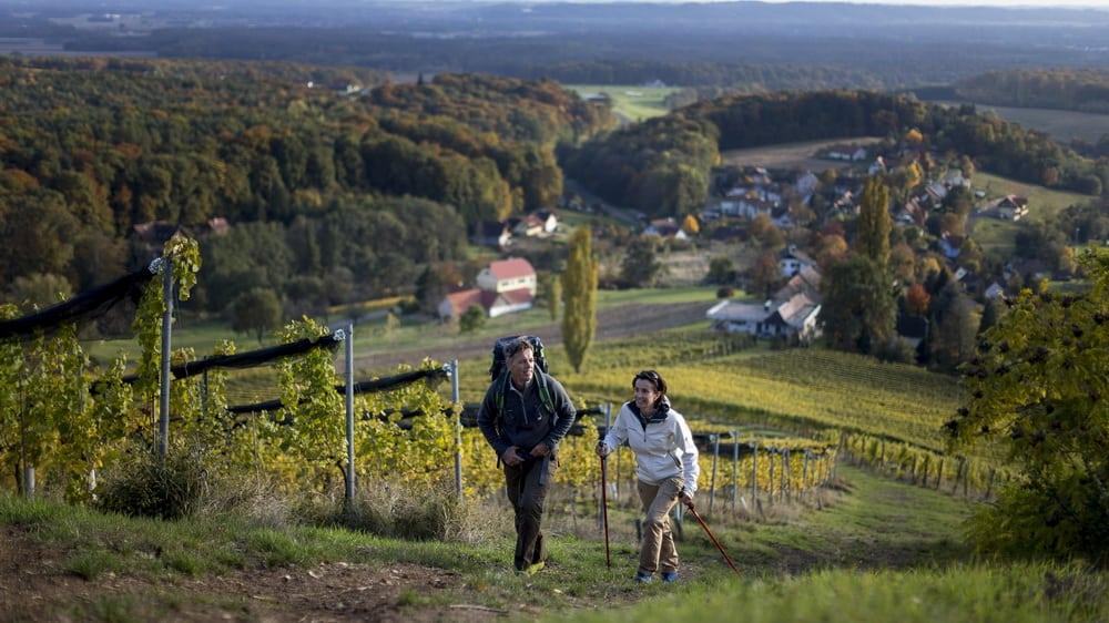 Vandring mellan viner och vulkansten - Klöch - Semester i Österrike med Austria Travel