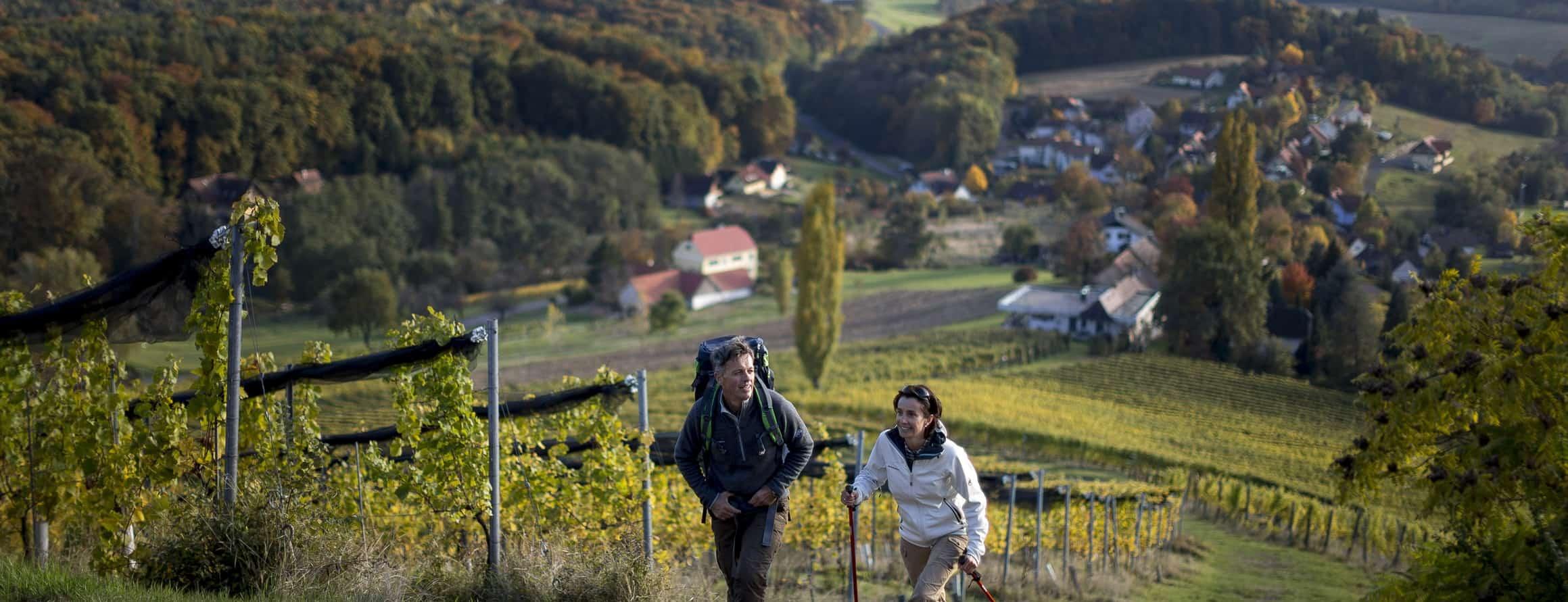 Vandra i Klöch i Südoststeiermark - Semester i Österrike med Austria Travel