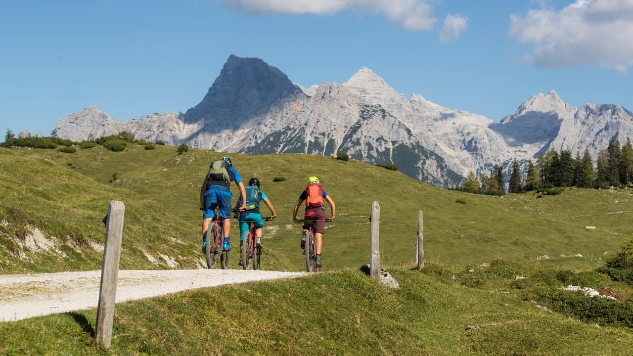 Mountainbike Kitzbühel MTB Kat Bike