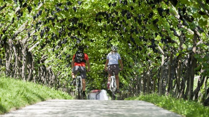 Cykelresa Dolomiterna Venedig
