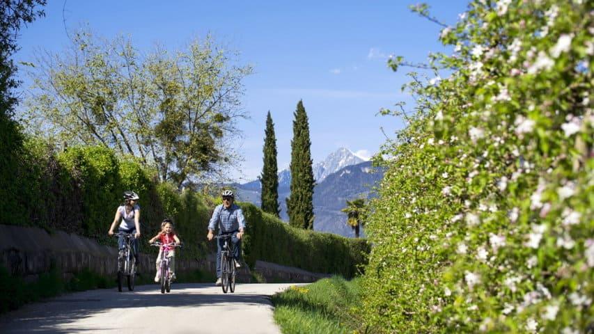 cykel Venedig
