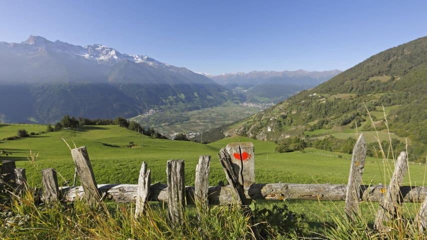 Gröna ängar Vinschger Höhenweg - Alta Via Val Venosta