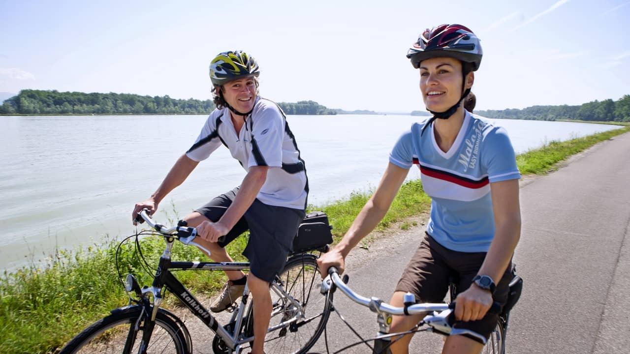 Cykla längs Donau Radweg till Wien