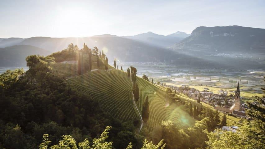 Vandring vingårdar slott Sydtyrolen
