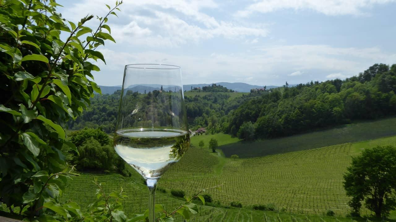 Utsikt över härliga vingårdar © Austria Travel - Rusner
